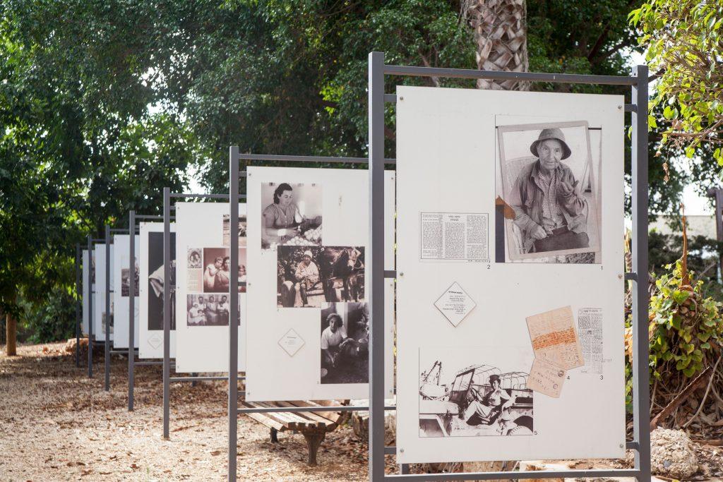 תערוכה מתחלפת מוזיאון עין חי